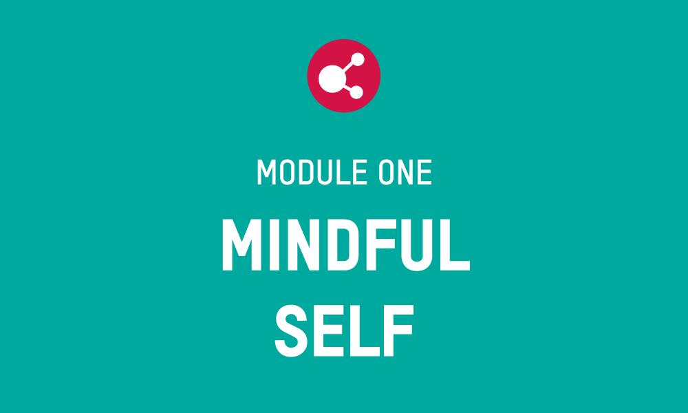 PFS Module 1 – MINDFUL SELF Workbook